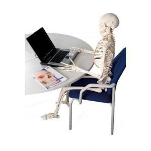 esqueleto-trabajando