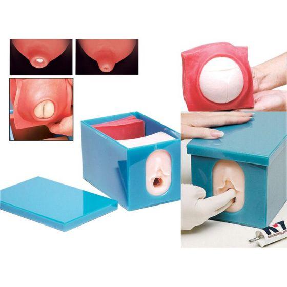 Set de modelo para el control fetal y el desarrollo de parto 3B - W43045